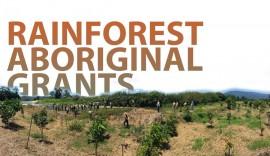 Rainforest Aboriginal Grants