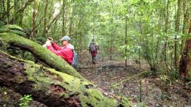 Rugged rainforest hides forgotten plane crash site