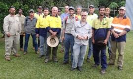 Yellow crazy ant taskforce report