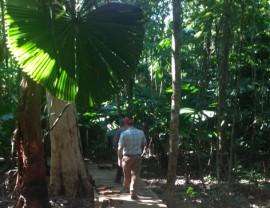 Wet Tropics Small Grants