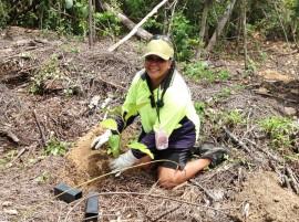 Wet Tropics Small Grant rehabilitates cassowary country