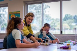 Yellow crazy ant team heads back to school
