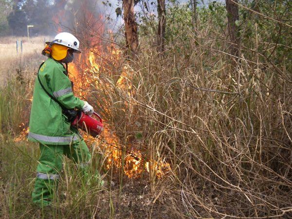 Altered Fire Regimes Wet Tropics Management Authority - Fire regime map us west coast