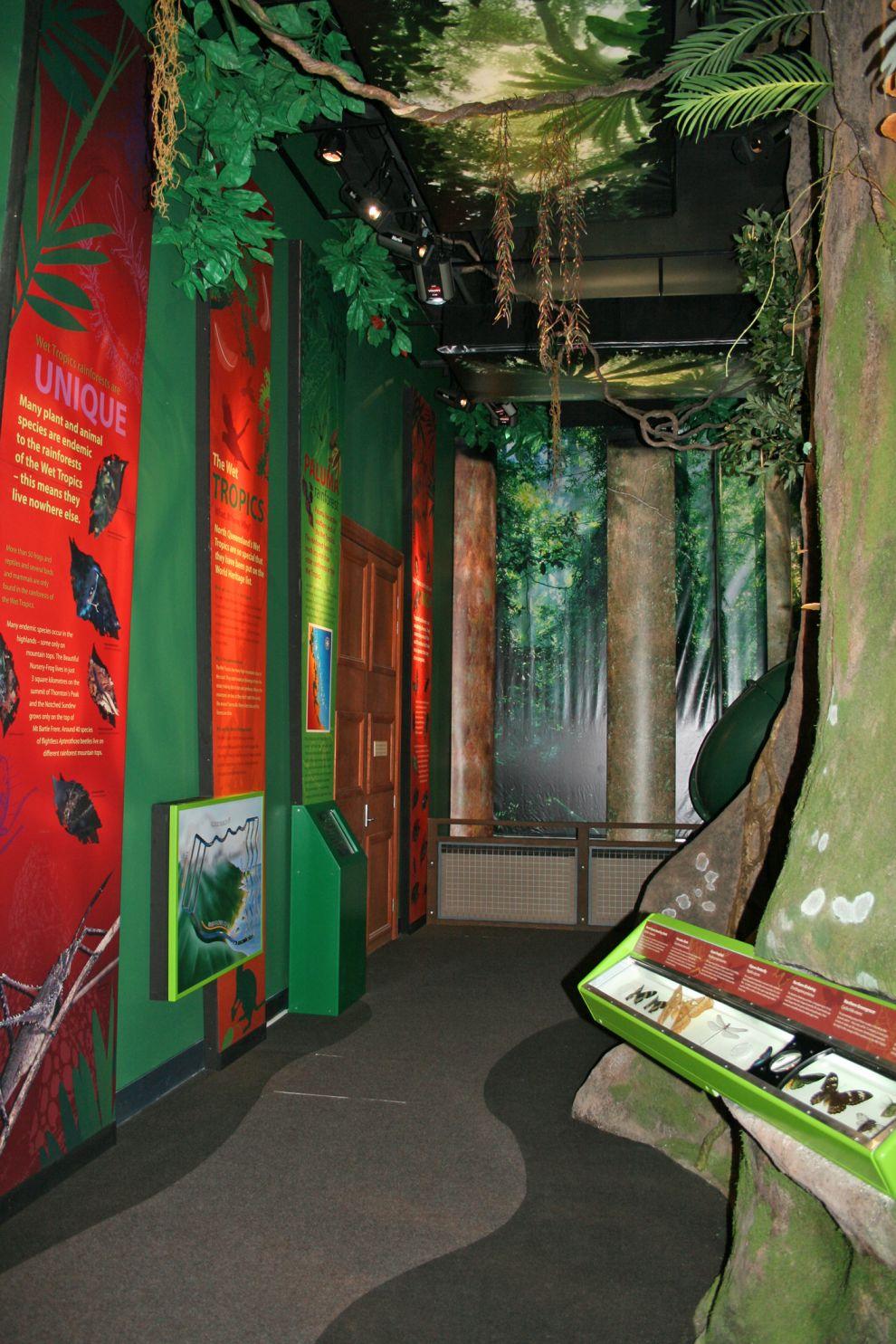 Queensland Tropical Museum Rainforest Exhibit opening, Townsville, December 2007 Photographer: Campbell Clarke