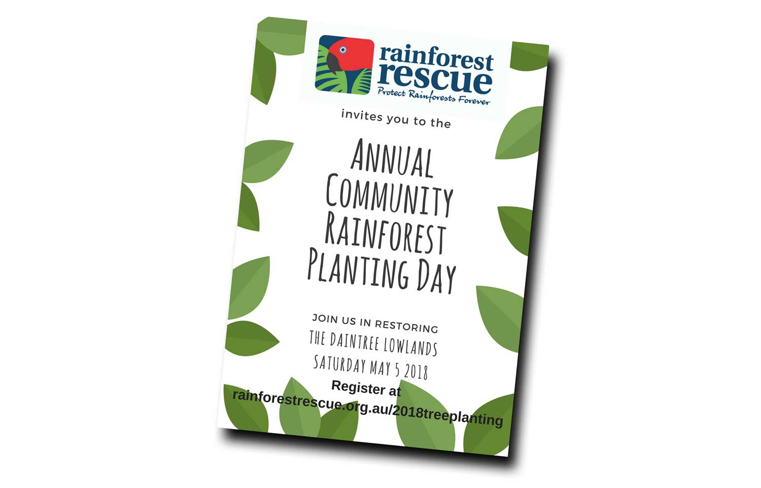 Rainforest Rescue Tree Planting Day