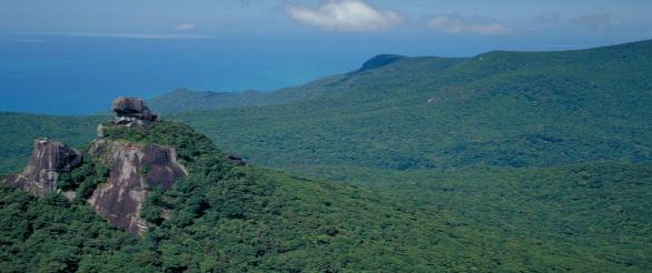 Mt Pieter Botte Photographer: Queensland Government