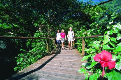 Rainforest Habitat Boardwalk - tourist group Photographer: Tourist Queensland
