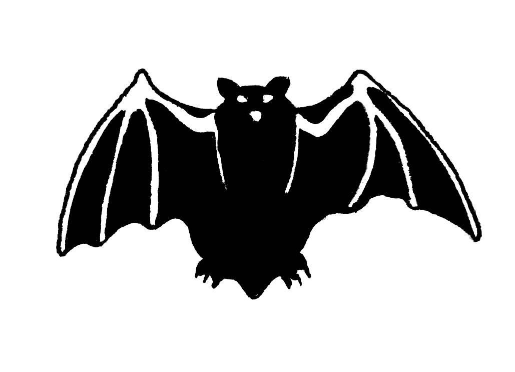 how to raise a bat