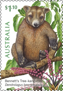 Stamp of approval for our Wet Tropics tree dwellers