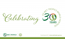 30 years of Wet Tropics World Heritage display