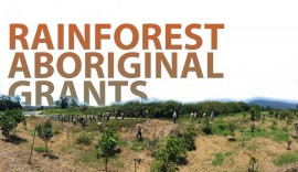 Rainforest Aboriginal Grants