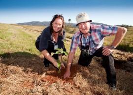 Community Tree Planting