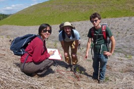 Climate Action Grants now open for the Wet Tropics