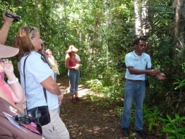 Register now for Daintree field school