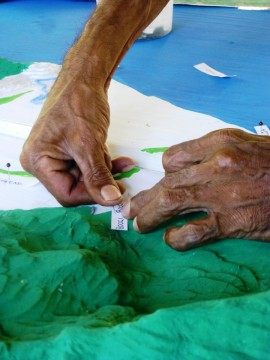Workshops for Rainforest Aboriginal people