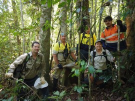 Task force fights Koster's curse in the Wet Tropics