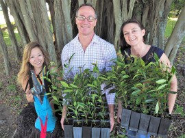 Future forests: 300 free trees to giveaway at Cairns ECOfiesta