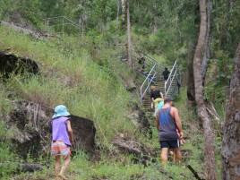 Murray Falls Rainforest Walk Photographer: Deanna Belbin