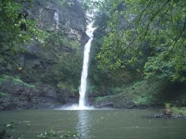 Nandroya Falls Photographer: WTMA