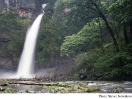 Nandroya Falls Photographer: Steve Nowakowski