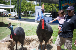 Celebrating World Cassowary Day