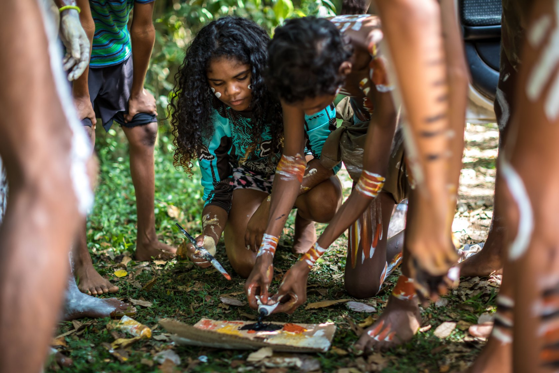 Anniversary of National Heritage listing of Wet Tropics cultural values