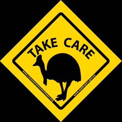 'Take Care' Cassowary Stickers