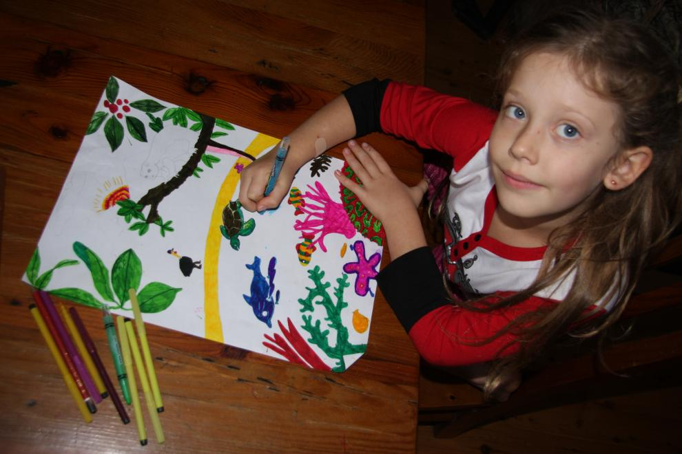 Wet Tropics Poster Competition