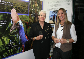 C4 Visitor Centre - Sandal Hayes and Liz Gallie Photographer: WTMA