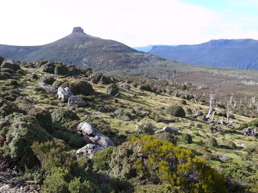 Mount Pelion East, Tasmanian Wilderness World Heritage Area Photographer: John Doherty